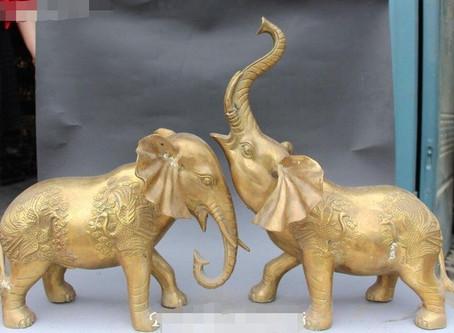 פגר של פיל לבן