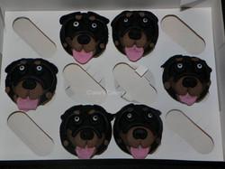 Rottweiler cupcakes