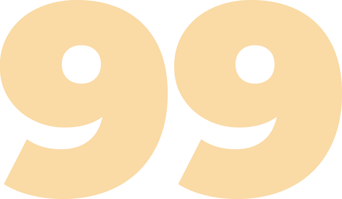 99 overlay artist png.png