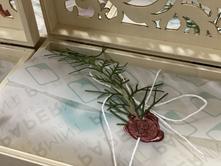 Details | Packaging