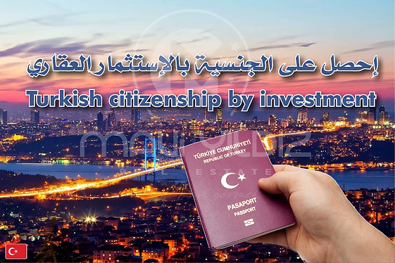 citizenship illustration maviyildiz.png