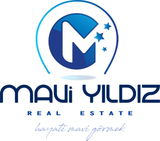 logo mavi yildiz.png
