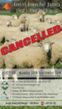 Cancel Flyer.jpg