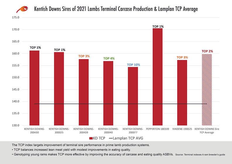 KD 2021 Lamb Sires Stats.jpg