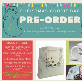 $38.95+tax Christmas Goodie (Mug/Xmas Mask/Cat & Human Treats/In the Tote Bag/Delivery)