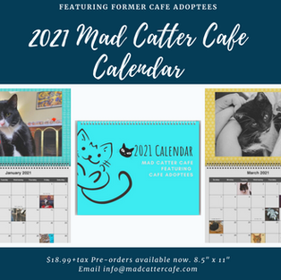 """$18.99+tax 2021 Mad Catter Cafe Calendar (Calendar featuring select cafe adoptees. 8.5""""x11"""")"""