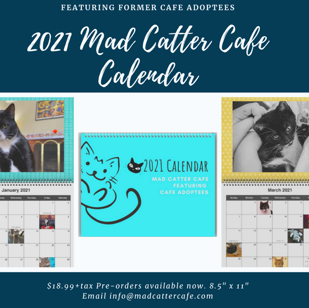 "$18.99+tax 2021 Mad Catter Cafe Calendar (Calendar featuring select cafe adoptees. 8.5""x11"")"