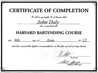 Undercover Jetsetter's Harvard Grad