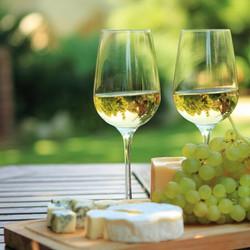 Cheese-Pairs-Better-White-Wine-Than-Red