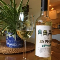New Wine Arrived: La Buena Espera Sauvignon Blanc from Spain