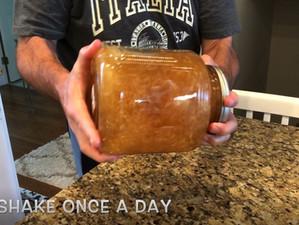 Garlic Vinegar