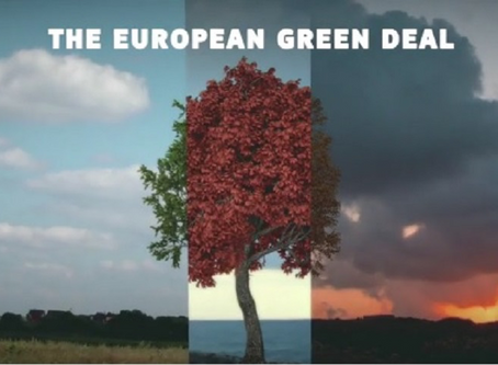 Green Deal : le « pacte vert » européen au service de la transition écologique.