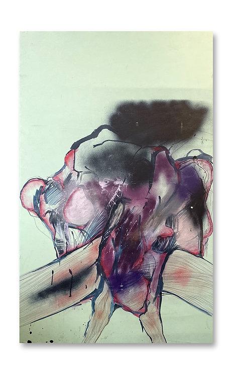 dissezioni_ultra vision (Ovolu's Anatomical) - Matteo Forli - FMB Art Gallery