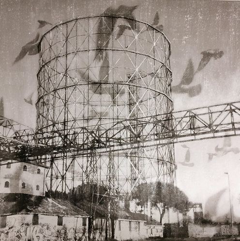 Gazometro birds - Cristiano De Matteis - FMB Art Gallery