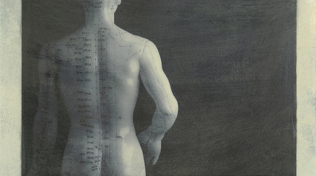 Acupuncture model back. Photography base