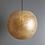 Thumbnail: Gold Shell