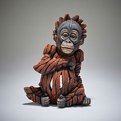 ed28-baby-orangutan.jpg