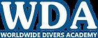Logo IDEA-WDA