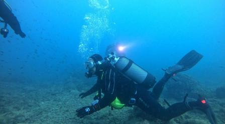 Artifact Diver - 2020