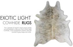 08-exotic-light