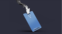 Tereo Co Image - Blu-Badge.png