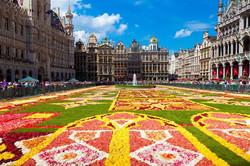 Grand Place Floral Carpet