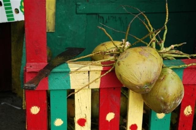 Jamaica Coconuts