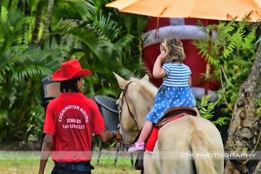 TKPhotography-Barbados-Photographer-horses.jpg
