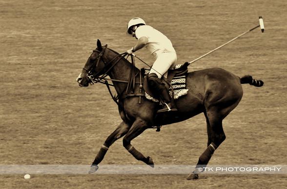 TKPhotography-Barbados-Photographer-polo-season-event.jpg