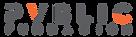 PVBLIC Foundation Logo HR tranparent (1)