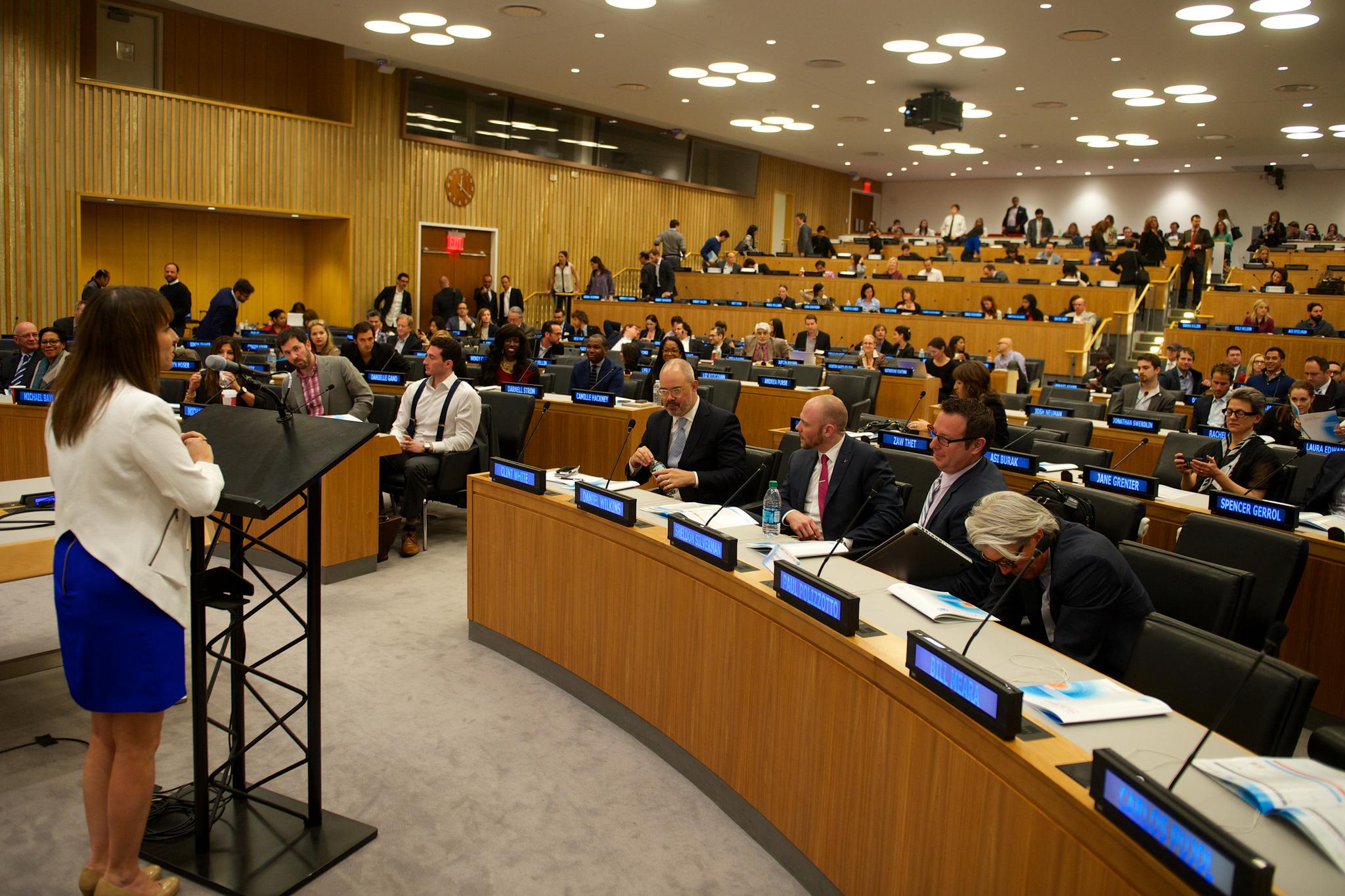 Panel UN