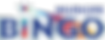 NUD104717 - NC Bingo Logo.png