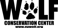 wcc_logo_black.png