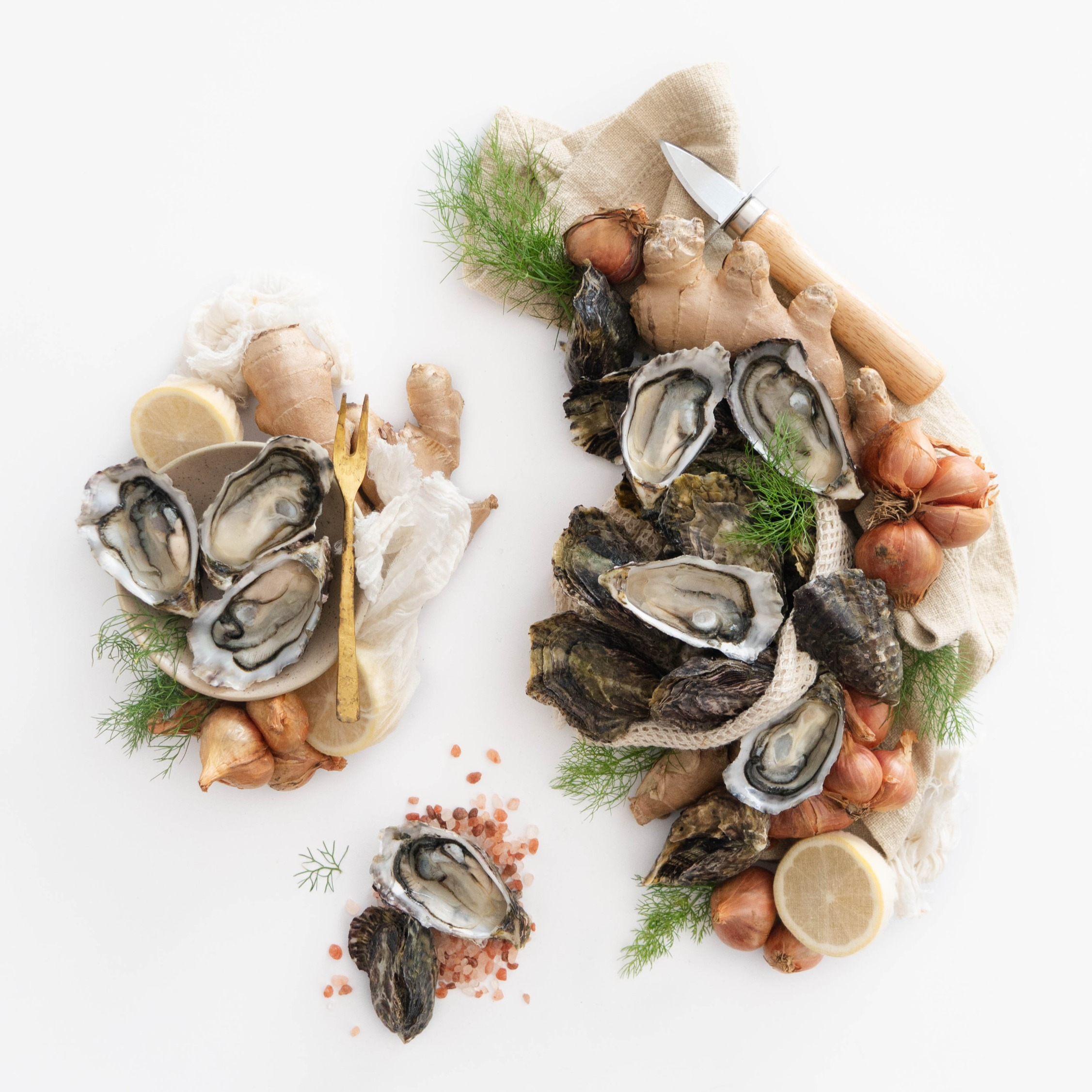 OYSTERS_edited