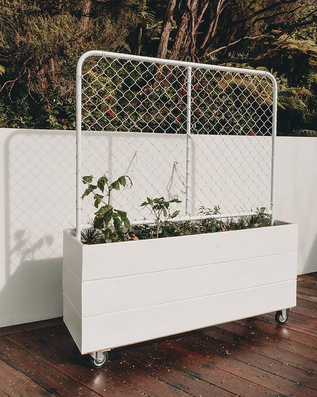 Bunnings planter boxes_-6.jpg