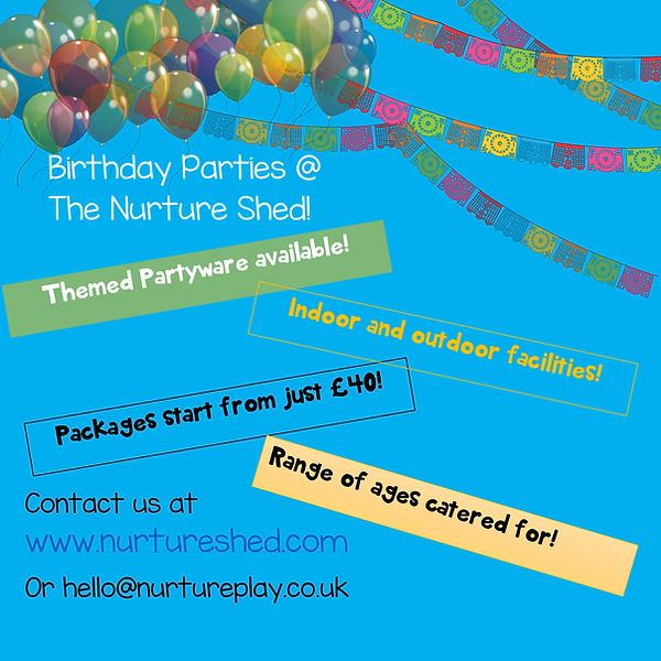 birthday party poster-1.png
