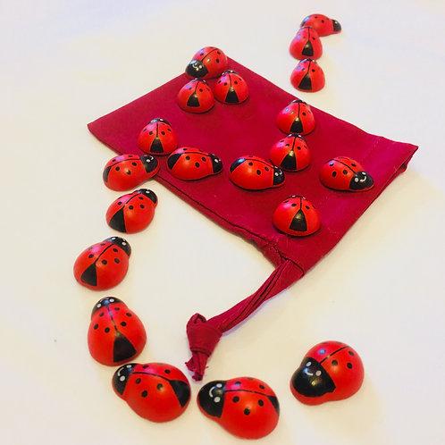 Ladybird Counting Sack