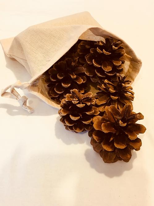 Medium Sack of Cones