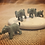 Thumbnail: Elephant 'Mite'