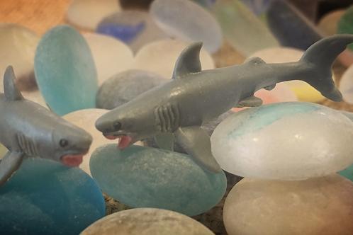 Great White Shark 'Mite'