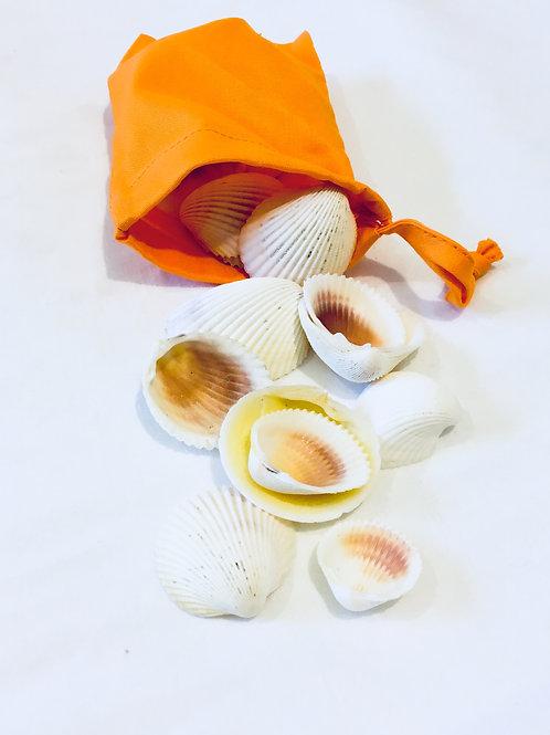 Small Sack of Sea Shells