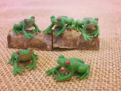 Frog 'Mite'