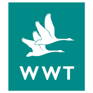 WWT.png