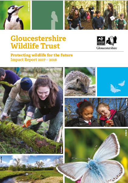 Gloucestershire Wildlife Trust Impact Report 2017-2018