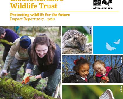 Gloucestershire Wildlife Trust Release Impact Report