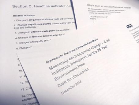 Draft Indicators Framework for the 25 Year Environment Plan - Consultation