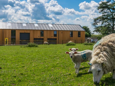 LET'S GROW: The Future of Rural Business and Communities in Gloucestershire