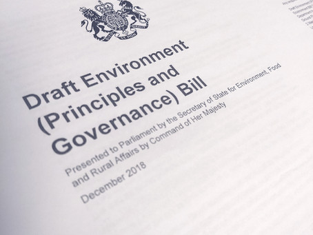 The draft Environment (Principles and Governance) Bill - Call for collective response