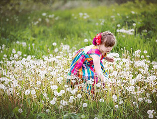 child-picking-dandelions-in-field_4460x4