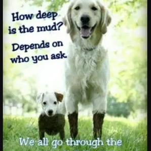 It's so Important for us to Teach our children Compassion and Empathy